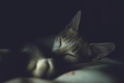 睡眠薬の一覧と副作用・注意点
